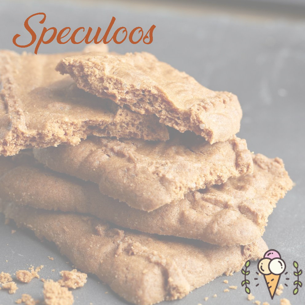 Glace speculoos 1L